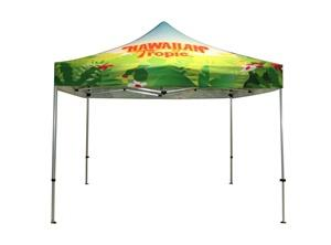 Top Quality Custom Canopy with Graphics  – Capital Exhibits